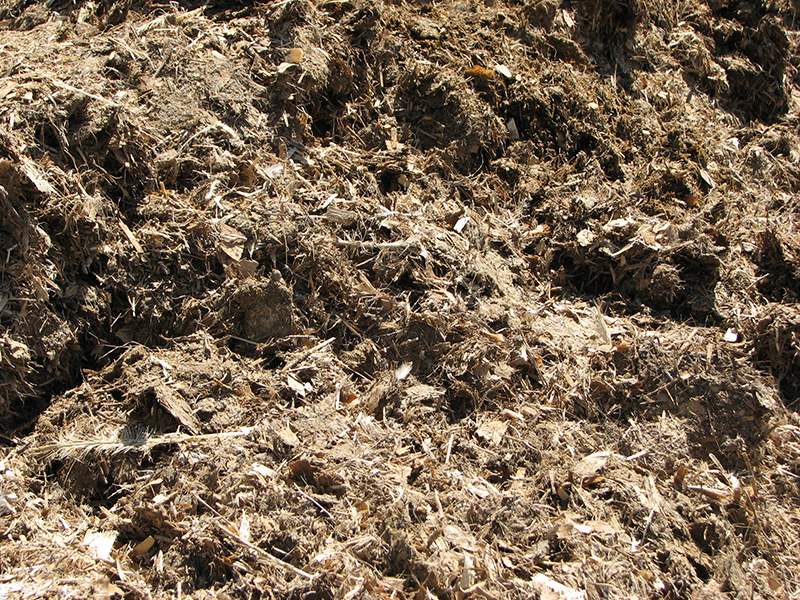 kusev-turkey-manure